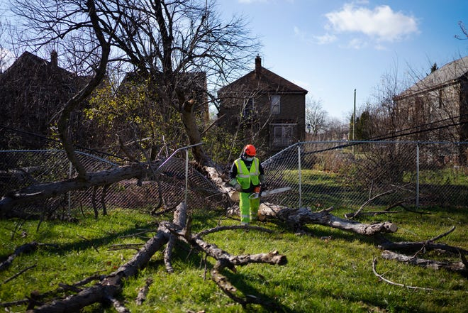 Jason Ronders, a journeyman with Energy Group, Inc., clears a tree that fell across an alleyway behind a home on Seminole Street on Nov. 16, 2020, in Detroit. Crews were dispatched all over Detroit and the surrounding towns after last night's storm. The crew had worked 16 hours the day before and picked up again at 7 a.m. Ronders has been with the company for 22 years.