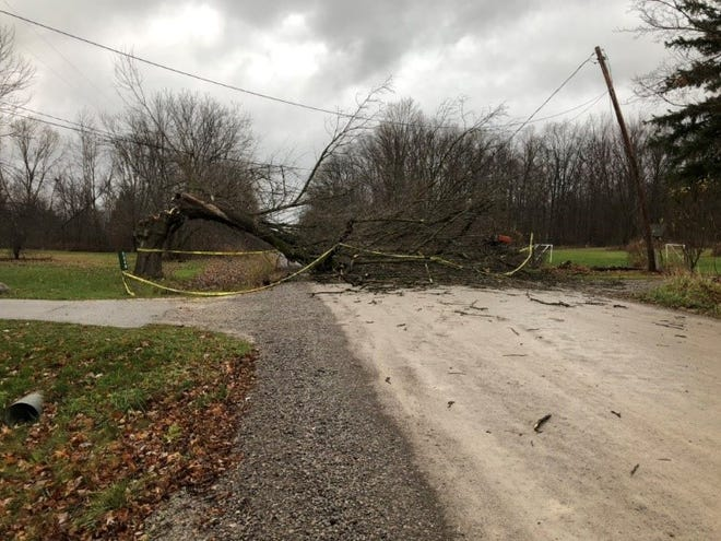 High winds battered Michigan Sunday, Nov. 15, 2020, causing widespread power outages and downed trees.