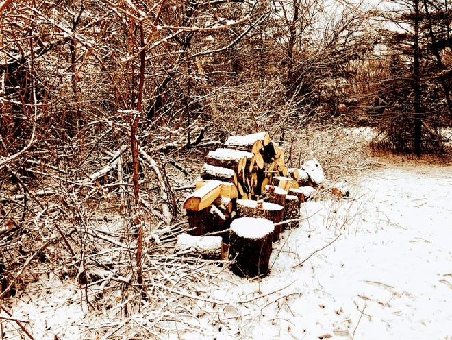 A dusting of the season's first snow sits atop author Jerry App's woodpile.