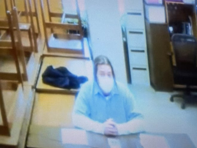 Chad Cobb testifies via video Tuesday from prison where he is incarcerated for the murder of a Jackson Township woman. He testified in the murder trial of Erica Stefanko, his ex-wife.