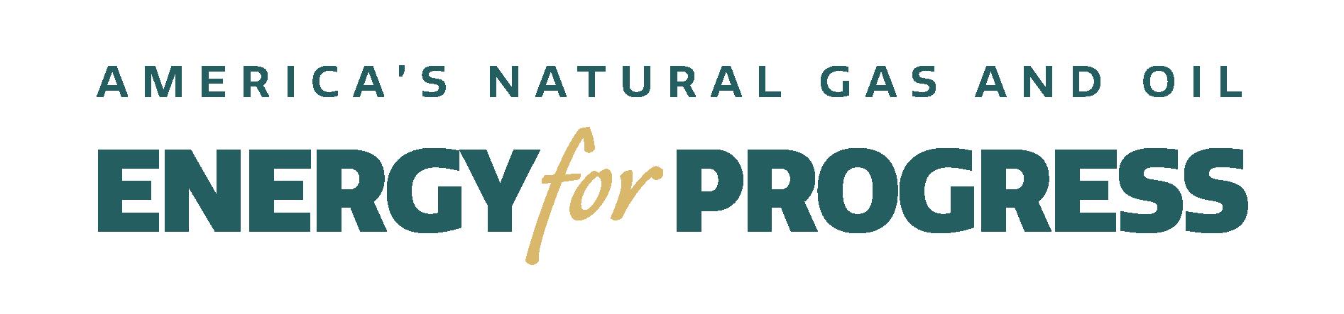 American Petroleum Institute Logo