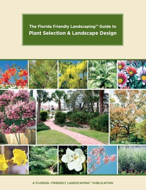 "The online publication ""The Florida Friendly Landscaping Guide to Plant Selection & Landscape Design"" has information about low-maintenance plants and environmentally sustainable practices."