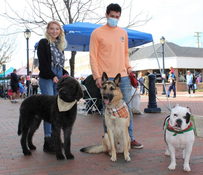 On the left, Spencer Harrison of Hopewell, Devin Roach of Chesterfield, and their furry friends pose for the Social Butterfly while attending the Fall Fur Fest held in downtown Hopewell on Nov. 14, 2020. Dogs from left to right, Double Doodle Great Gatsby, German shepherd Koda owned by Spencer's sister Makenna Harrison, and American Bully Roxy.