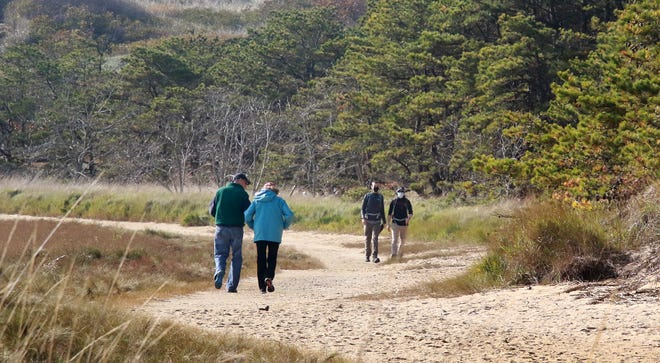 Walkers stroll the trails on Great Island, Wellfleet.
