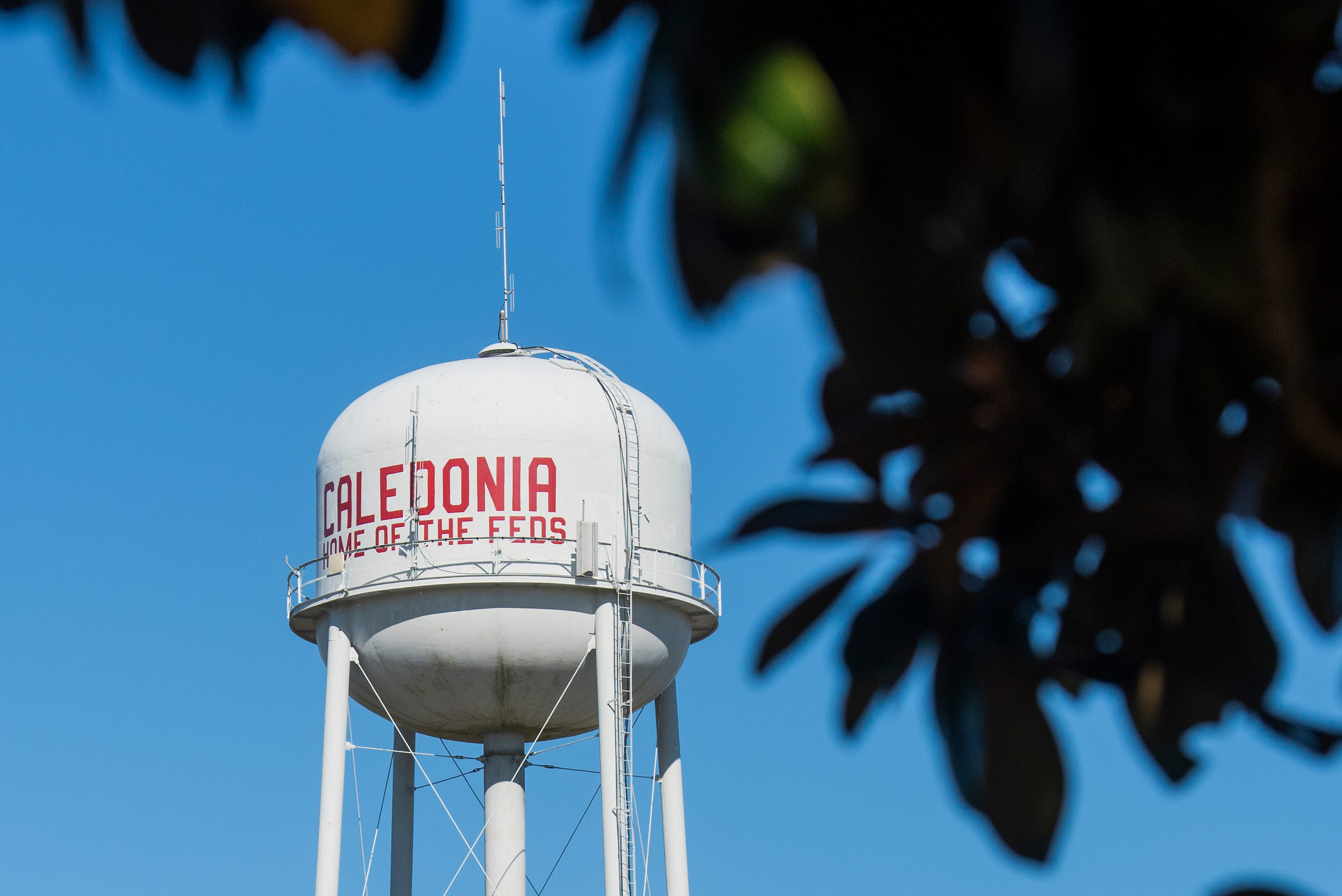 Framed by the leaves of a magnolia tree Monday, Nov. 16, 2020, the Caledonia, Miss., water tower is now a sign of the past. As of mid-November, Caledonia High has changed its nickname from Confederates to the Cavaliers.