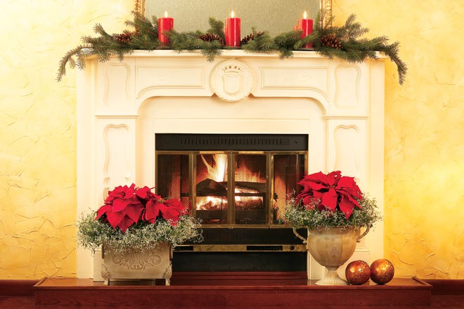 Poinsettias in ornate containers flank a festive fireplace.