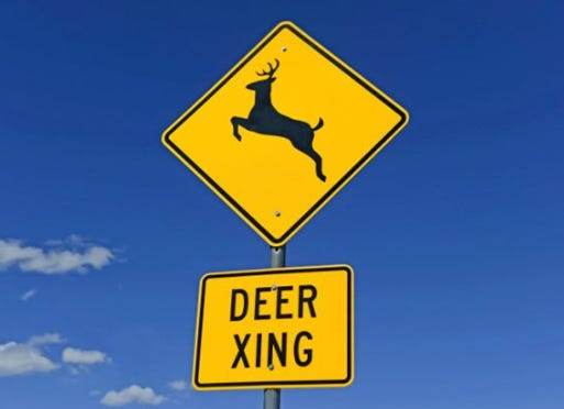 The Delaware State Police are reminding motorists the deer rut and hunting season is in effect, hoping to prevent the spike in deer-related crashes that typically occur every fall in Delaware.