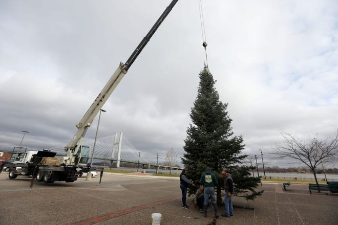 In this file photo,  workers with Myers Tree Farm and Fye Excavating Inc., both of Sperry, secure a 27 1/2-foot-talll Concolor Fir tree from Michigan Nov. 21, 2019, in front of Memorial Auditorium. Burlington Riverfront Entertainment has announced the second annual Holiday Tree Lighting ceremony will be Saturday on the riverfront.