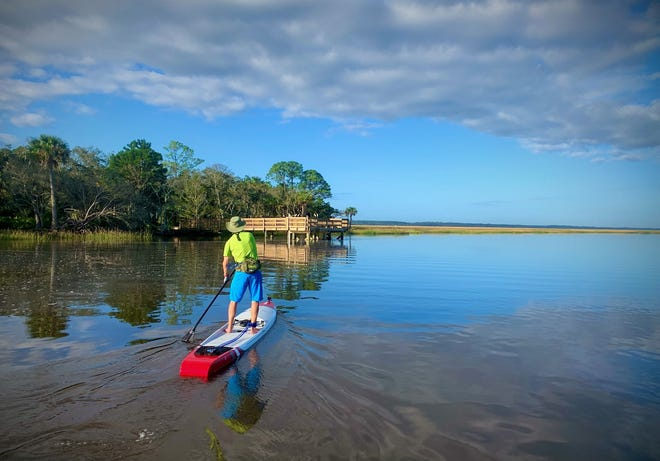 Times-Union columnist Mark Woods paddleboards past the Edwards Creek day-use area in 7 Creeks Recreation Area — the new name for a collection of seven contiguous parks and preserves on Jacksonville's Northside.