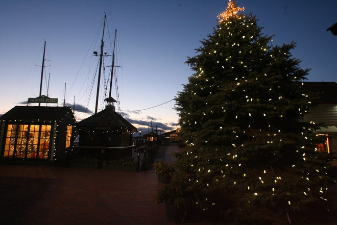 The lighting of the tree on Bowen's Wharf can be viewed online.