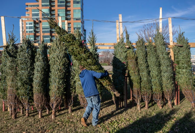 Chris Hartwick carries a Christmas tree at Book's Christmas Trees, formerly known as Tom's Tree Lot, the annual holiday tree stand on Witherspoon Street in downtown Louisville, Kentucky. Nov. 18, 2020
