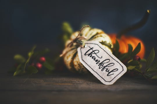 This year has been hard and we're all ready for it to be in the rearview mirror and fading into the background, but there are still things for which to be thankful.