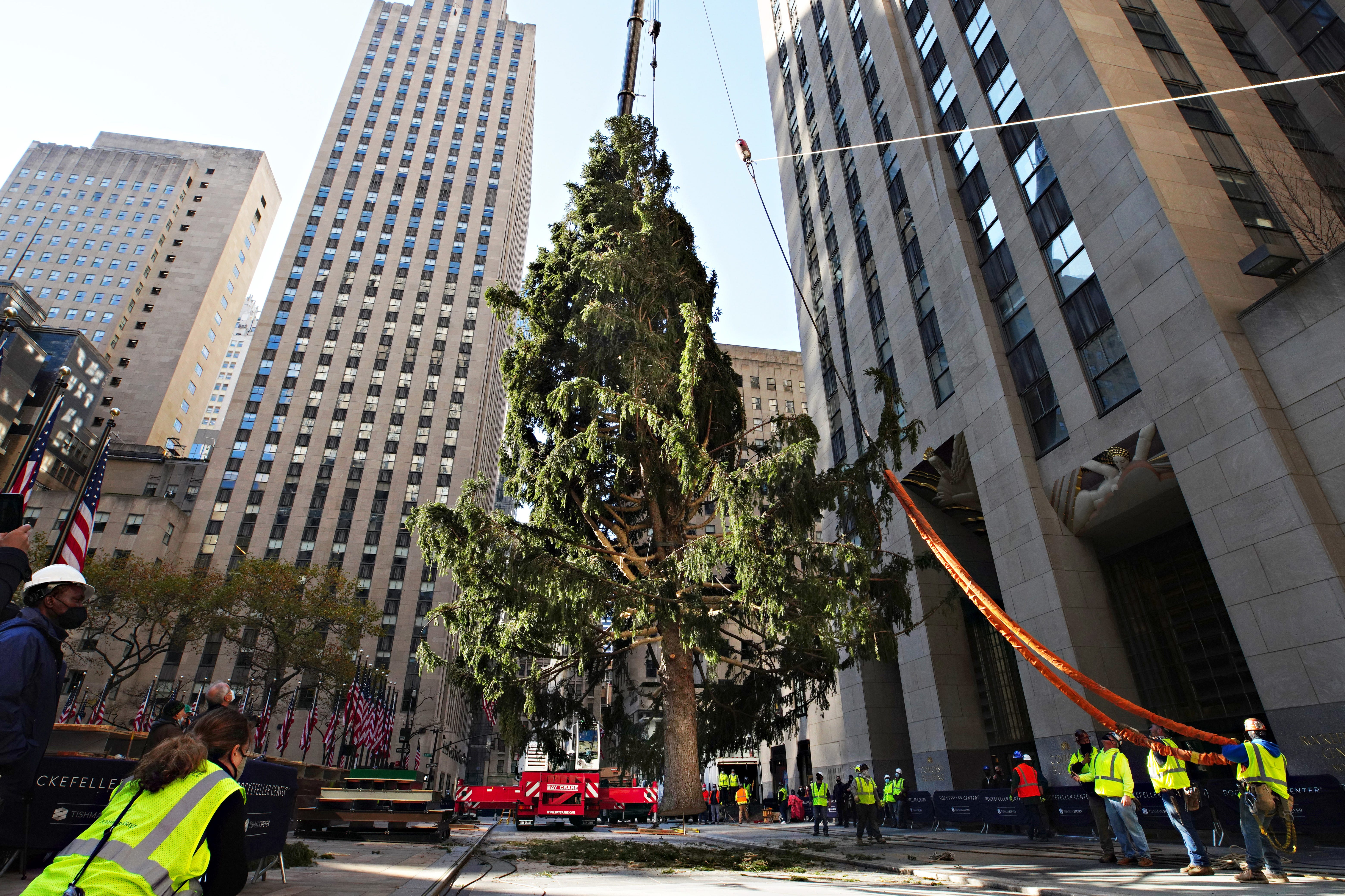 Peak 2020: Early Christmas cheer hilariously crushed by 'saddest' Rockefeller Center tree