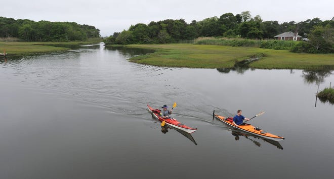 A couple of kayakers paddle down the Swan Pond River in 2019.