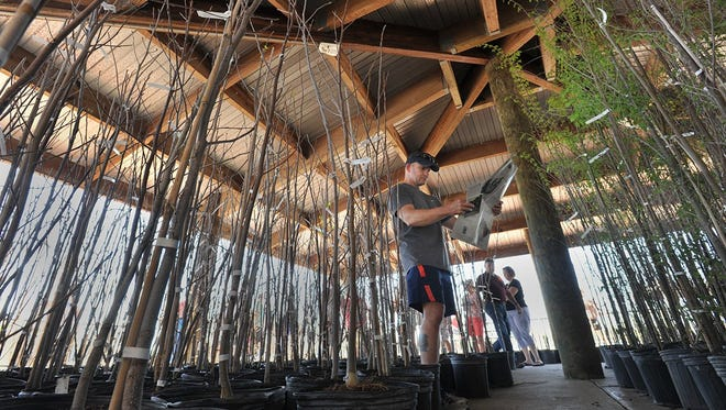 Greenscape of Jacksonville gives away hundreds of trees at its 2017 festival at Metropolitan Park. More will be given away Saturday in partnership with the city and Keep Jacksonville Beautiful at the Prime Osborn Convention Center. Free shredding services will be offered as well for America Recycling Day.