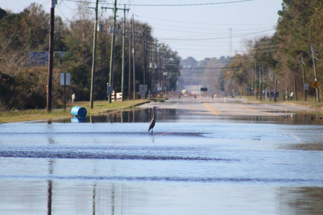 Water remains on Hwy. 11 near Skinner's Bypass Friday, November 20, due to flooding.