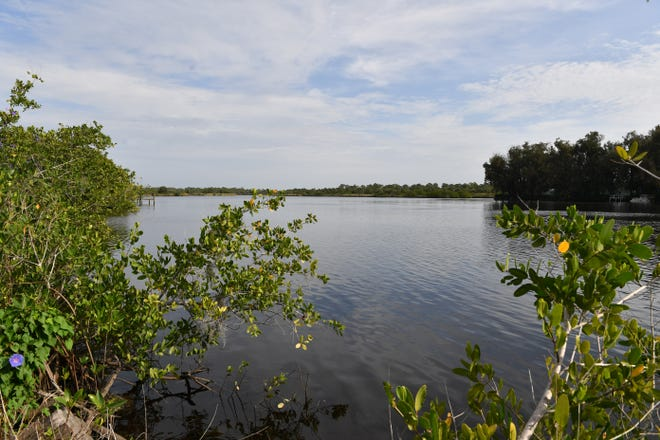 The Myakka River, as seen from Senator Bob Johnson's Landing park in South Venice. North Port residents who live in Wellen Park are pushing for the city to contract and deannex all land west of the Myakka River.