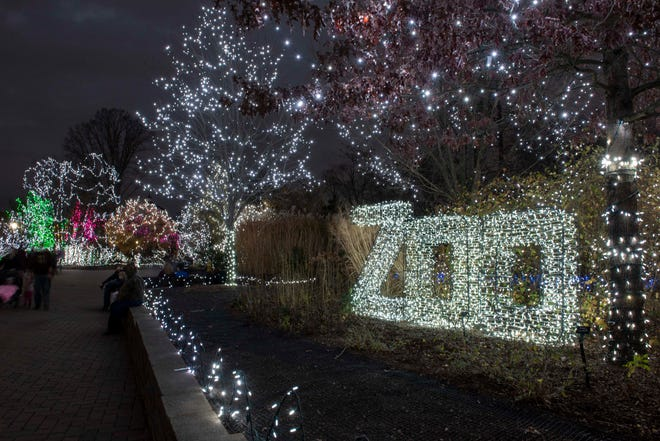 Jan. 15-17 is the final weekend to catch the PNC Festival of Lights at Cincinnati Zoo.