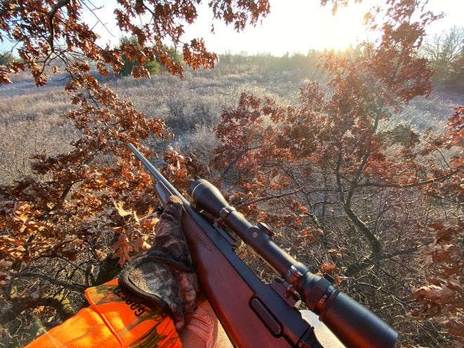 A hunter's view from a treestand in Racine County on opening morning of the 2020 Wisconsin nine-day gun deer hunting season.