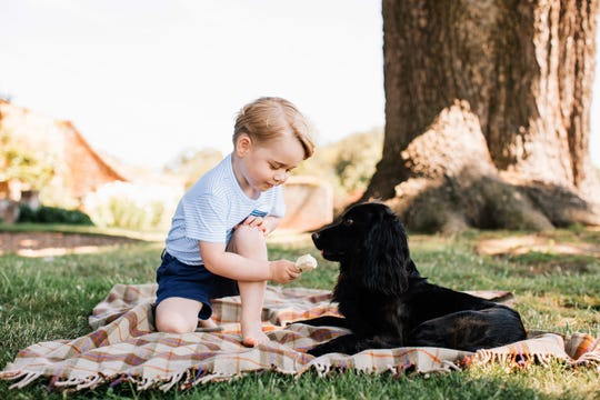 A photo released on July 22, 2016 by Prince William and Duchess Kate shows Prince George with Lupo at Sandringham in Norfolk.