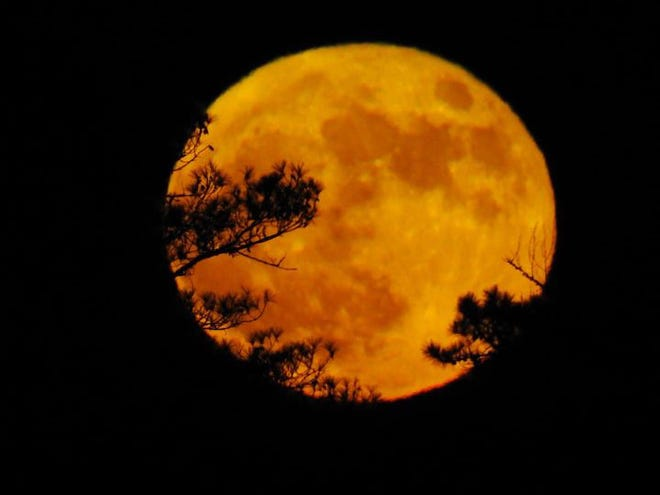 Month after month, Fairfield Harbour residents capture amazing sights that we feel compelled to share with our Beacon readers. This month was no exception. Larry Knapp captured this picture of the full harvest moon from Upper Broad Creek on Halloween night. [CONTRIBUTED PHOTO]
