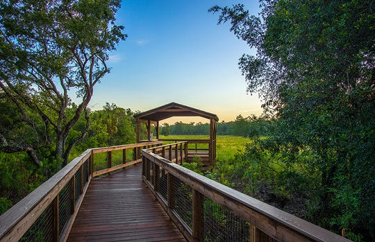 Surrounded by 800 acres of preserves, Winding Cypress offers residents opportunities to enjoy its natural setting, from the boardwalk, pavilion and bird wading overlook, to the linear park and community garden.