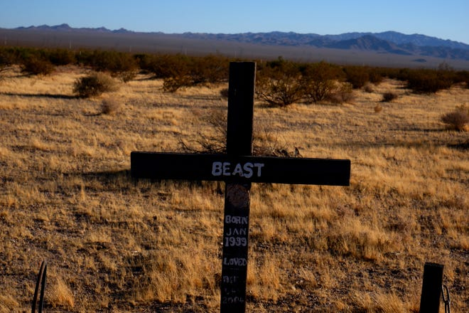 On Searchlight Highway, about four miles from Boulder City, is a pet cemetery Southern Nevadans have been burying their beloved furry friends for decades.