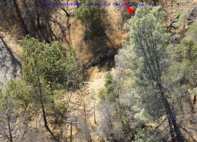 Pacific Gas and Electric Company, a federal judge and Cal Fire are looking into whether the gray pine with a red arrow pointing at it played any role in the start of the Zogg Fire.