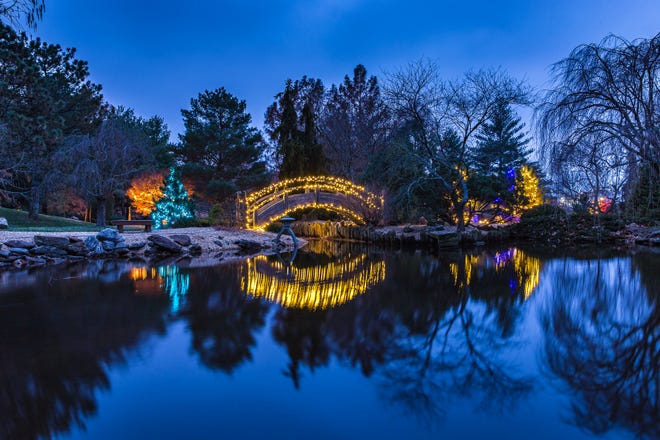 More than 100,000 lights are installed at Mizumoto Japanese Stroll Garden for Gardens Aglow.