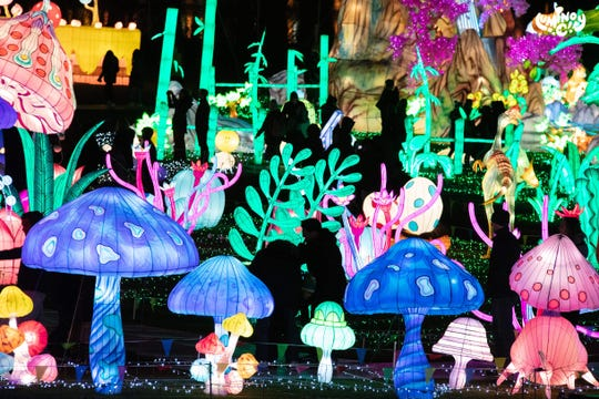 Light Arts In Wild Adventure is one of the themes at the Luminocity Festival.
