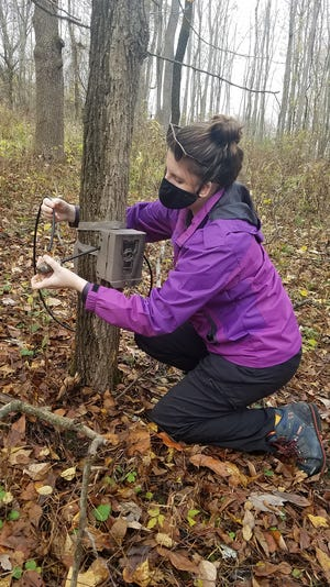 Laura Kieliszak, a Finger Lakes Community College natural resources conservation student, positions a trail camera at the Muller Field Station at the south end of Honeoye Lake.