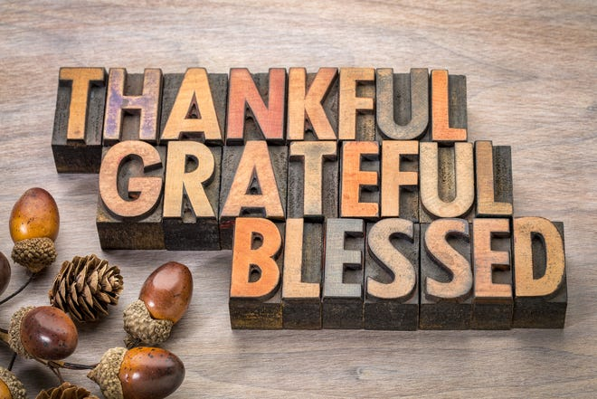 This Thanksgiving, never stop being grateful.
