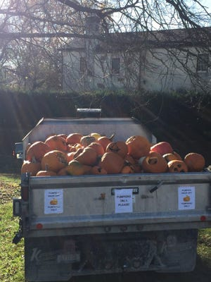 Residents can drop off old pumpkins through Saturday, Dec. 6, at Fancyburg Park, 3375 Kioka Ave. The discarded gourds are being taken to a composting site in London rather than being dumped in the Franklin County Sanitary Landfill.