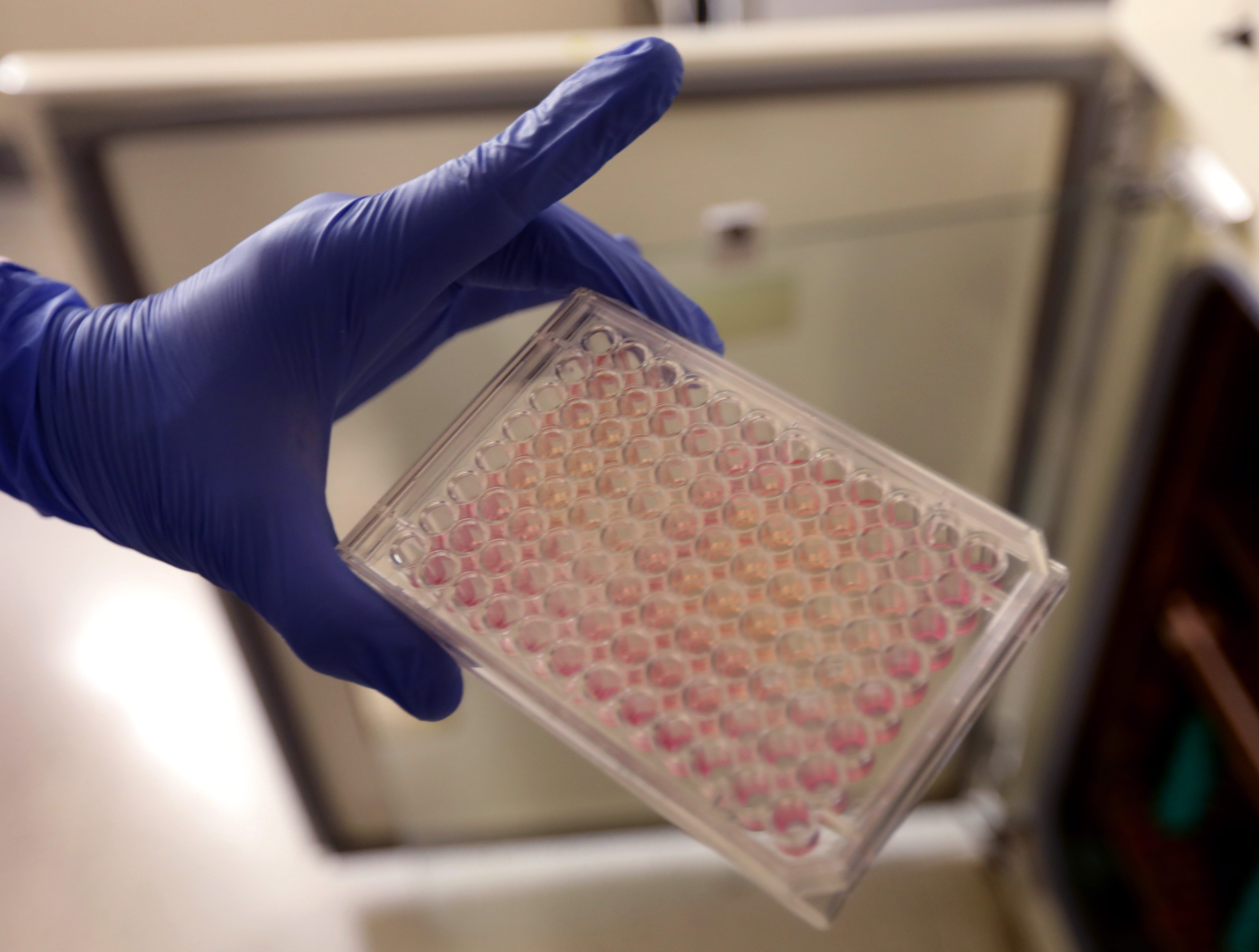 Benhur Lee handles samples of cells used in his COVID-19 research in his lab on Sept. 29, 2020 in New York City.