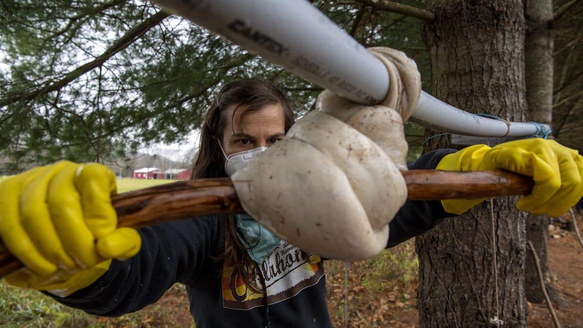Appalachian artist teaches traditional tanning workshops