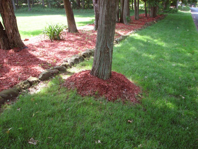 Don't create mulch volcanoes like this.