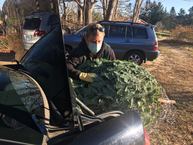 Phil Gaudette, co-owner of The Fir Patch Farm in Salem, loads a tree into a customer's car Tuesday.