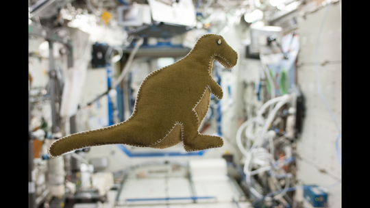 NASA astronaut Karen Nyberg, Expedition 37 flight engineer, made this stuffed dinosaur toy aboard the International Space Station, using scraps of food-packaging liners and a T-shirt.