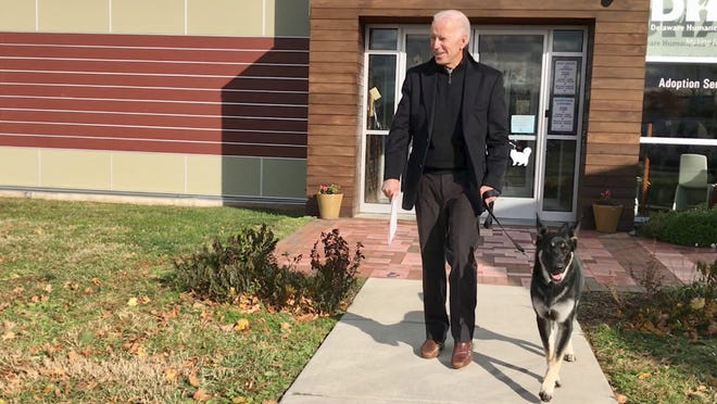 Joe Biden, then-president-elect, leaves a Delaware pet shelter with his new dog, Major, a German shepherd. Major and another German shepherd, Champ, are now residents of the White House.