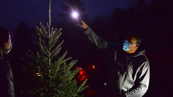 East Bridgewater S Mistletoe Acres Tree Farm Open For Christmas Season