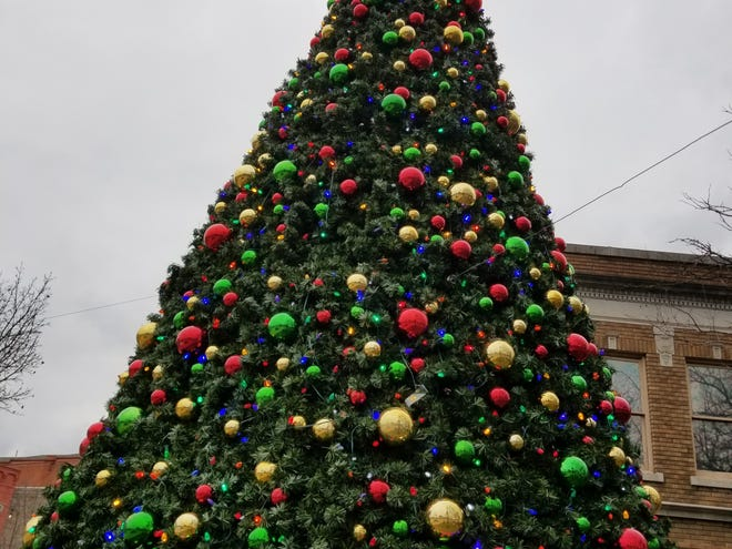 Take that Grinch! After a false start on Thanksgiving Day, the city Christmas tree is lighting up the holiday season in Hornell.