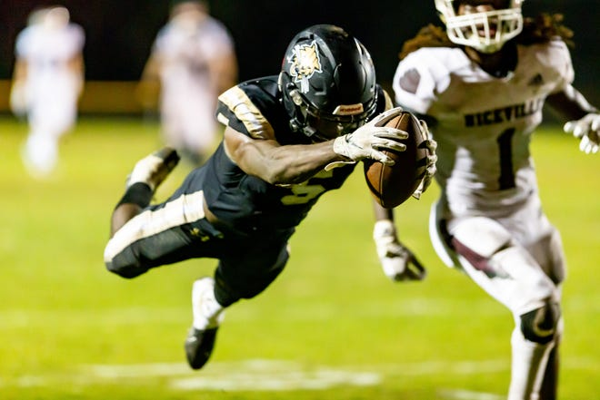Buchholz wide receiver Quan Lee dives for a touchdown in the second quarter Friday Niceville in the Region  1-7A final at Citizens Field.