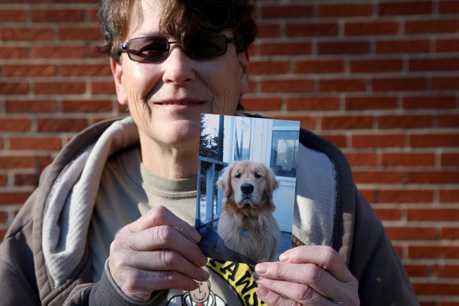 Karen Irwin, 56 of Plymouth, Michigan, lost Scout, a Golden Retriever who was hit and killed on 5 Mile Road in front of her house years ago. Even after getting another Golden Retriever, Irwin is still dealing with the loss.