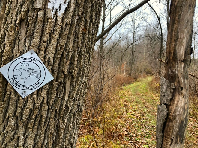 The Monkey Run Trail in Victor offers a fun hike.