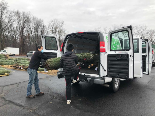 A BSA Scout and parent load Christmas trees for delivery.