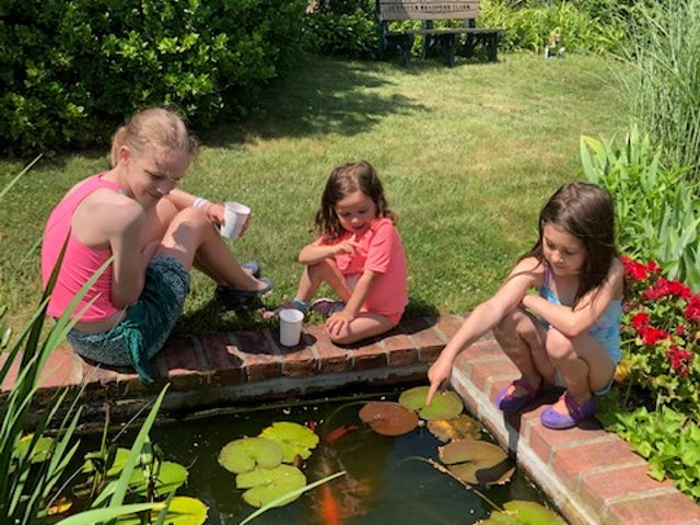 Visiting the koi pond earlier this year at the Church of St. Mary of the Harbor in Provincetown are, from left, Miranda Dziedzic, 11, Iris Lignori, 4, and Esme Lignori, 7.