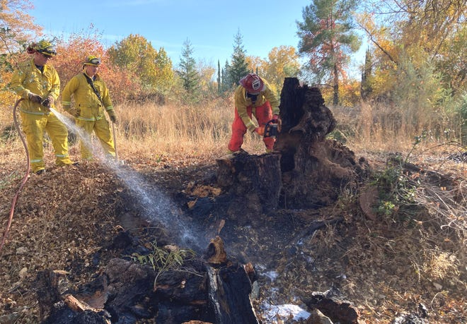 Redding Fire Department firefighters put out a fire that started Monday when a spark blew out of a debris pile and started a nearby tree on fire in south Redding.