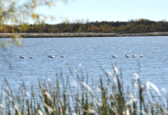 The city of Wichita Falls will look for bids to construct the Lake Wichita Trail.