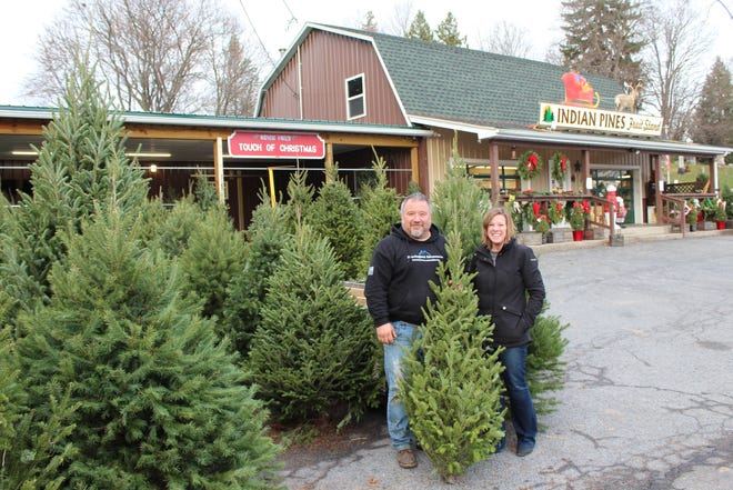 At Indian Pines Fruit Stand on Elm St. in Penn Yan, Dale Lane and Kara Hinson offer Balsam, Canaan, Concolor, Douglas, and Frazier firs, cut fresh from a tree farm in Pennsylvania.