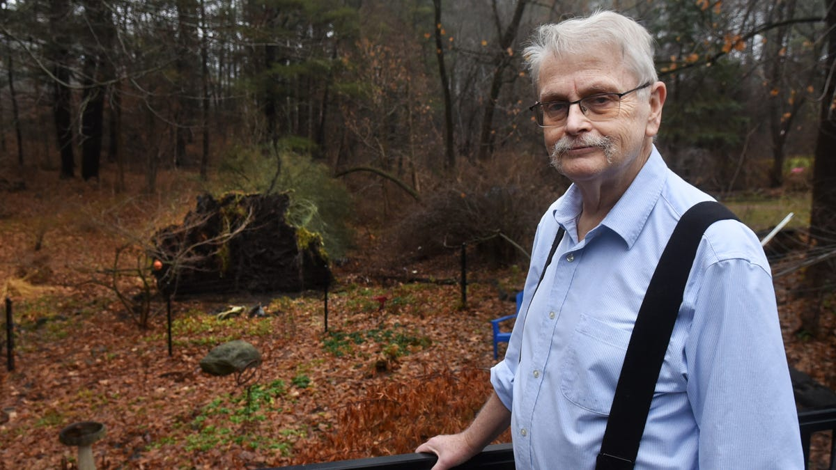 Dover man feels lucky after 90-foot pine falls, misses 1650 home